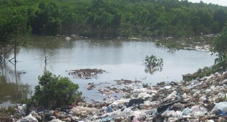 Xử phạt vi phạm hành chính hơn 103 tỷ đồng về lĩnh vực tài nguyên môi trường