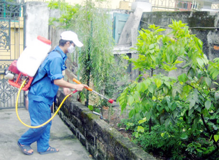 Tăng cường công tác phòng, chống sốt xuất huyết