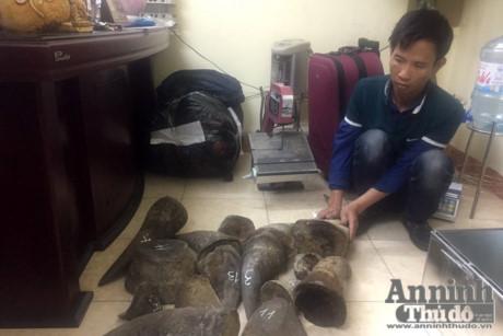 Tình trạng buôn bán động vật hoang dã trái phép vẫn diễn biến phức tạp