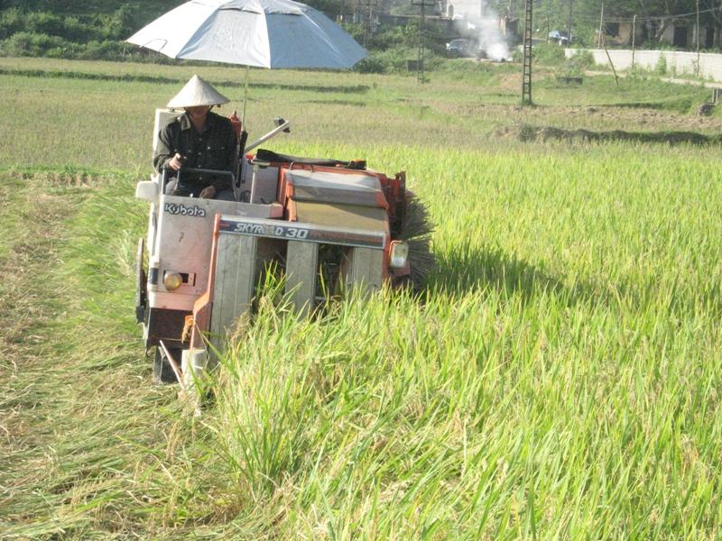 Hà Giang: Đẩy mạnh cơ giới hóa trong tái cơ cấu ngành nông nghiệp