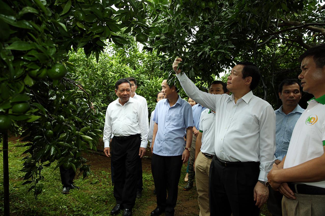 Phó Thủ tướng Vương Đình Huệ làm việc tại Hòa Bình