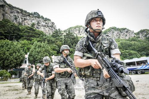 Gần 70.000 lính Mỹ, Hàn Quốc bắt đầu tập trận