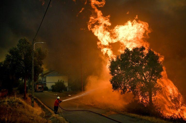Cháy rừng gây nhiều thiệt hại tại Bồ Đào Nha
