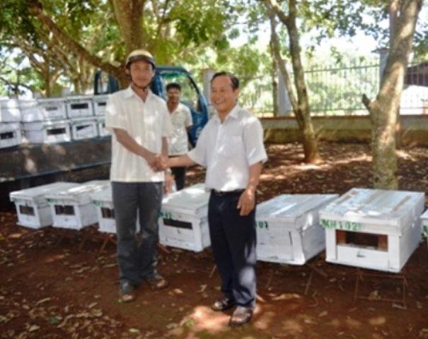 Đắk Lắk: Chuyển giao giống ong Ý cho bà con tại Thành phố Buôn Ma Thuột
