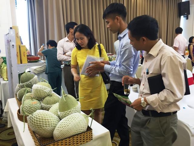 Đẩy mạnh phân phối rau an toàn trên địa bàn Thủ đô