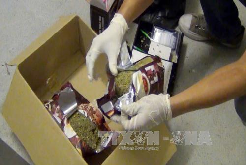 Thành phố Hồ Chí Minh: Liên tiếp phá hai chuyên án ma túy, thu giữ lượng lớn ma túy