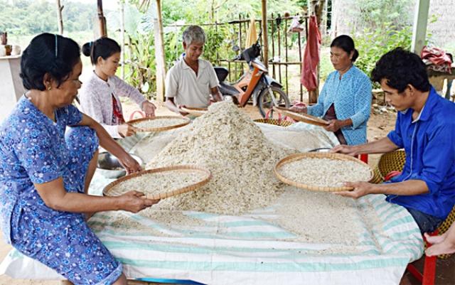 Nguồn vốn trợ giúp hộ Khmer nghèo vươn lên
