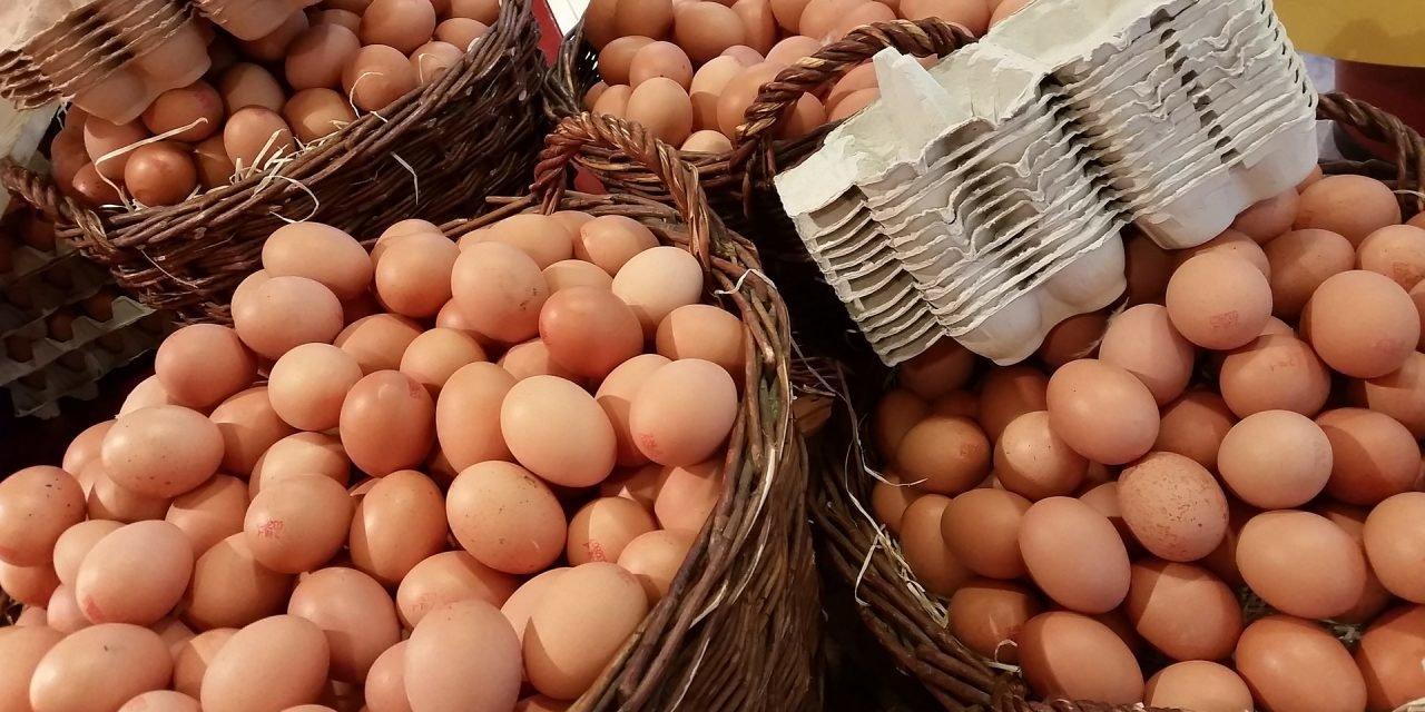 """Vụ bê bối """"trứng bẩn"""" làm ảnh hưởng tới 18 quốc gia"""