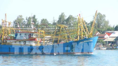 Quảng Nam xây dựng cảng cá và khu dịch vụ hậu cần cho tàu xa bờ