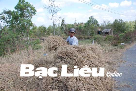Bảo vệ môi trường nông thôn: Cần tái sử dụng các phế phẩm từ sản xuất nông nghiệp
