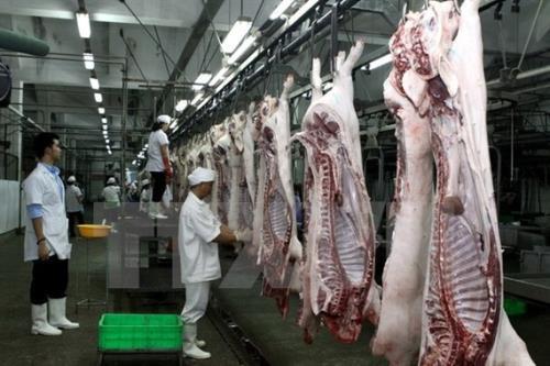 Long An tăng cường kiểm soát các cơ sở giết mổ lợn
