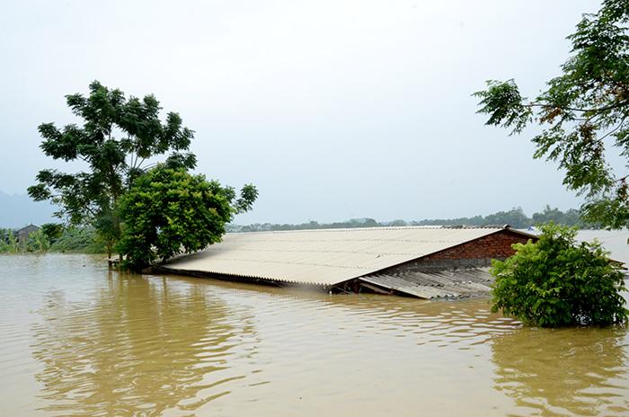 Tận thấy cảnh ngập lụt ở Chương Mỹ (Hà Nội)
