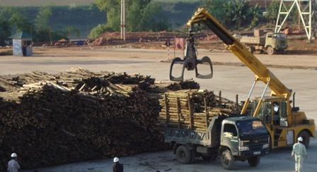 Đồng Nai có 4 mặt hàng xuất khẩu đạt kim ngạch trên 1 tỷ USD
