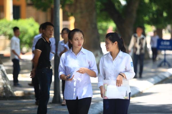 Rà soát các ngành thuộc nhóm ngành đào tạo giáo viên trình độ cao đẳng, đại học