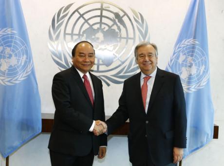 Việt Nam và Liên hợp quốc: Một ví dụ điển hình về hợp tác phát triển