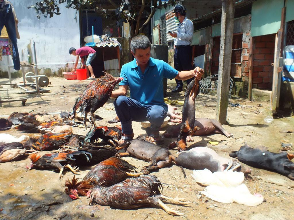 Vụ rò rỉ khí amoniac tại TP. Hồ Chí Minh: Người dân có quyền được bồi thường thiệt hại?