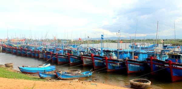 Phú Yên: Siết chặt tình trạng khai thác hải sản trái phép ở vùng biển nước ngoài