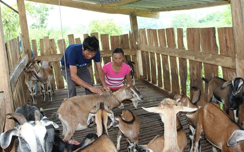 Tỉnh Thái Nguyên đầu tư hơn 5.187 tỷ đồng hỗ trợ giảm nghèo bền vững giai đoạn 2017 - 2020 