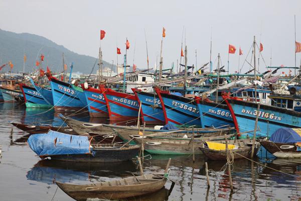 Để nghề khai thác biển Trà Vinh vươn khơi