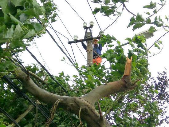 Khẩn trương khôi phục cấp điện trở lại sau cơn bão số 12