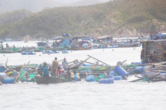 Cộng đồng người Việt tại Mexico quyên góp ủng hộ đồng bào khắc phục hậu quả cơn bão số 12