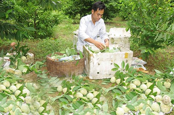 Giảm nghèo theo hướng tiếp cận đa chiều tại Hữu Lũng (Lạng Sơn)