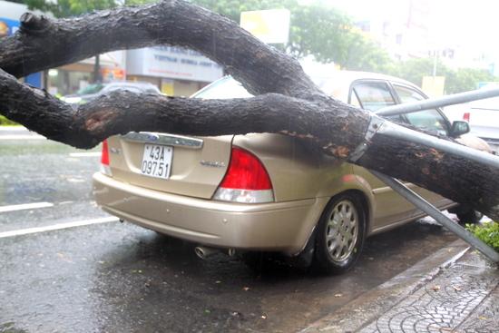 Đà Nẵng khẩn trương khắc phục bão số 12 để chào đón APEC