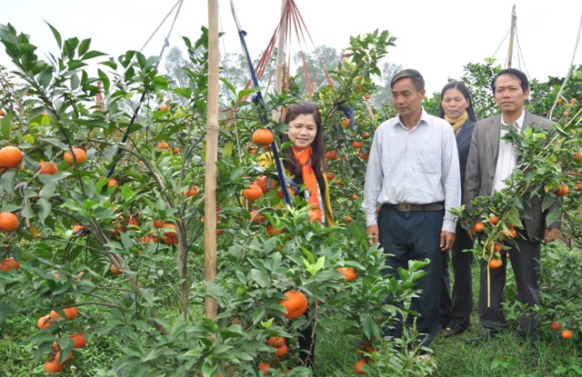 Tân Yên: Điểm sáng phong trào xây dựng nông thôn mới