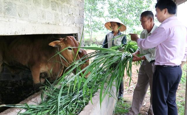 Bố Trạch, Quảng Bình: Khi phụ nữ sử dụng vốn vay hiệu quả