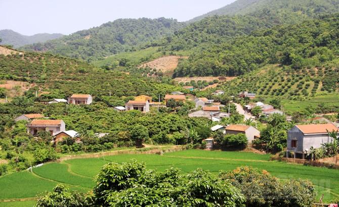 Bắc Giang: Phấn đấu giảm 4 - 5% hộ nghèo, cận nghèo ở các xã đặc biệt khó khăn