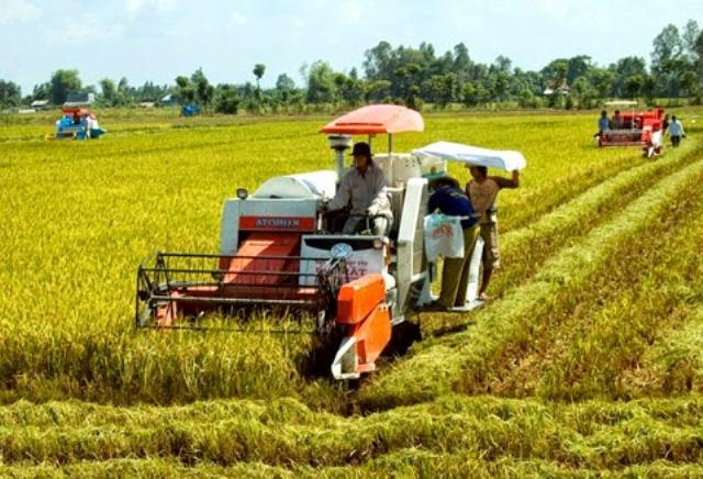 Hiệu quả bước đầu từ thực hiện cơ giới hóa trong sản xuất nông nghiệp