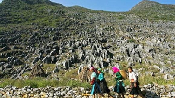 Phê duyệt Quy hoạch tổng thể phát triển du lịch Khu du lịch quốc gia Cao nguyên đá Đồng Văn