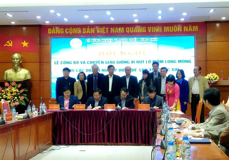 Lần đầu tiên Việt Nam tạo thành công giống vi rút lở mồm long móng dùng để sản xuất vắc xin