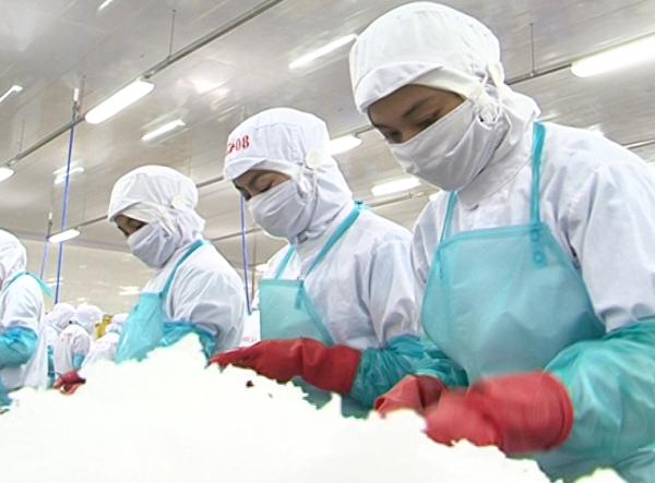 Ninh Thuận: Giải quyết việc làm cho người lao động năm 2017 vượt kế hoạch giao