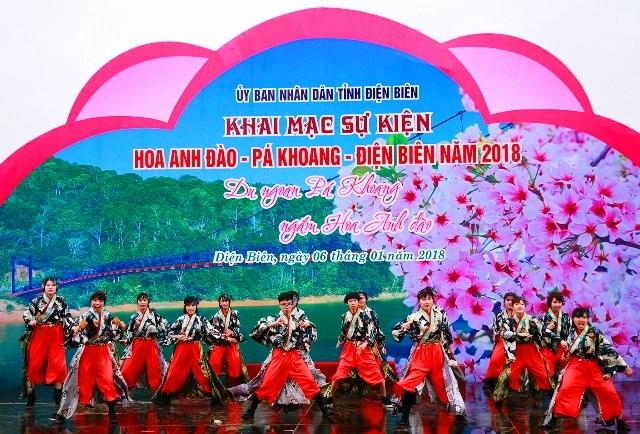 Khai mạc sự kiện Hoa Anh Đào - Pá Khoang - Điện Biên năm 2018