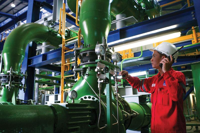 Điện lực dầu khí sẽ bán cổ phần vào ngày 31-1