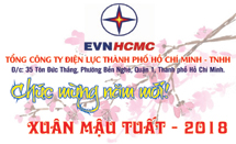 Tổng Công ty Điện lực Thành phố Hồ Chí Minh