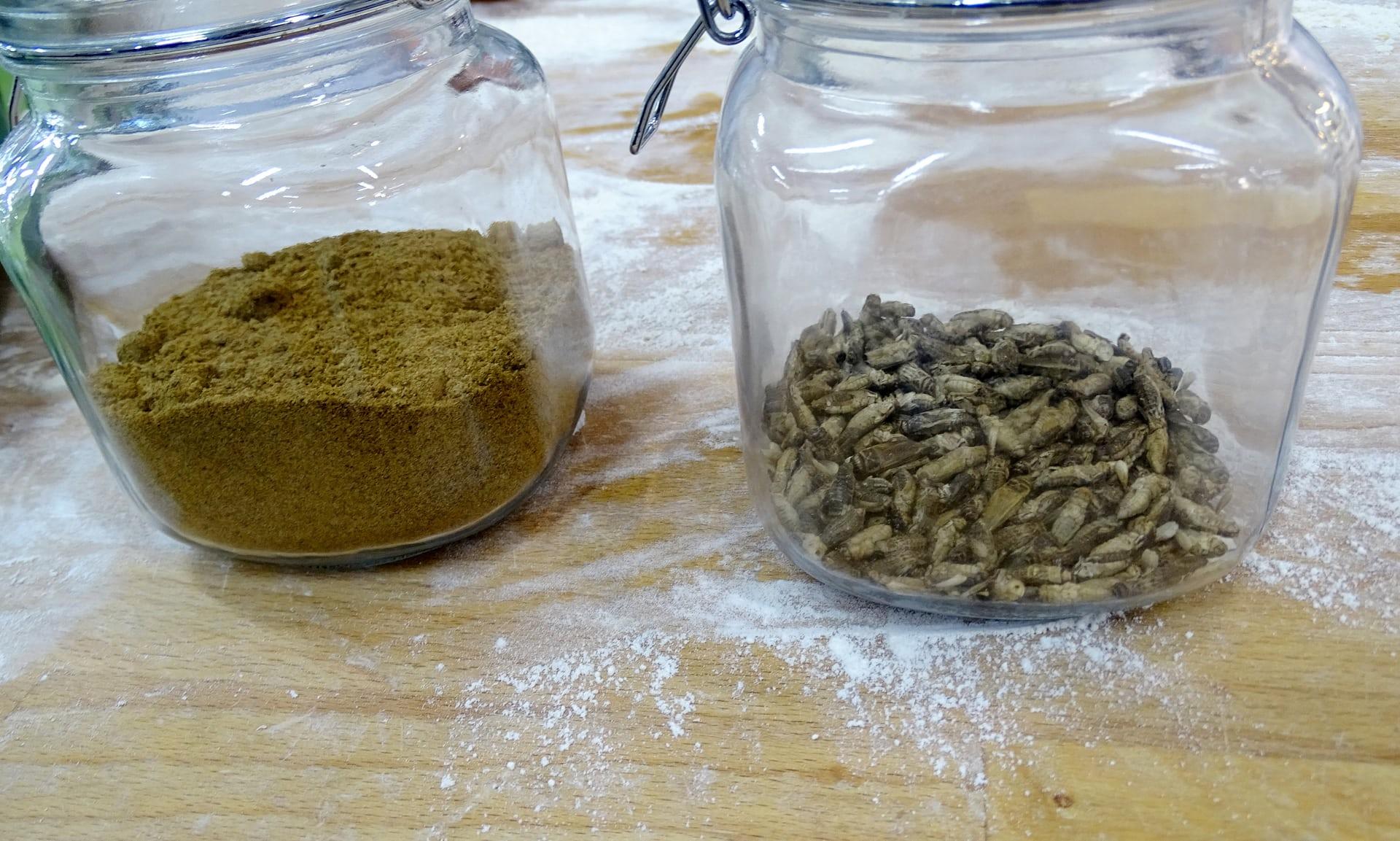 Phần Lan: Những chiếc bánh mì làm từ côn trùng đầu tiên trên thế giới