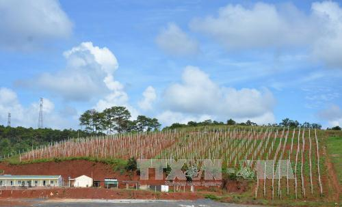 Đắk Nông đảm bảo nước tưới cho mùa khô