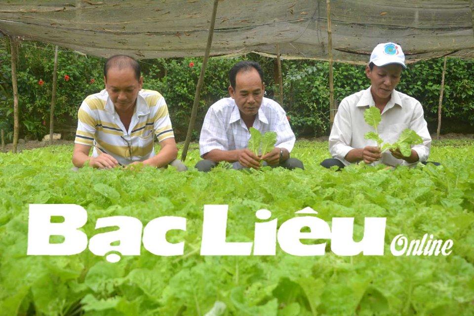 Vai trò Hội, đoàn thể trong vận động nông dân sản xuất nông sản sạch