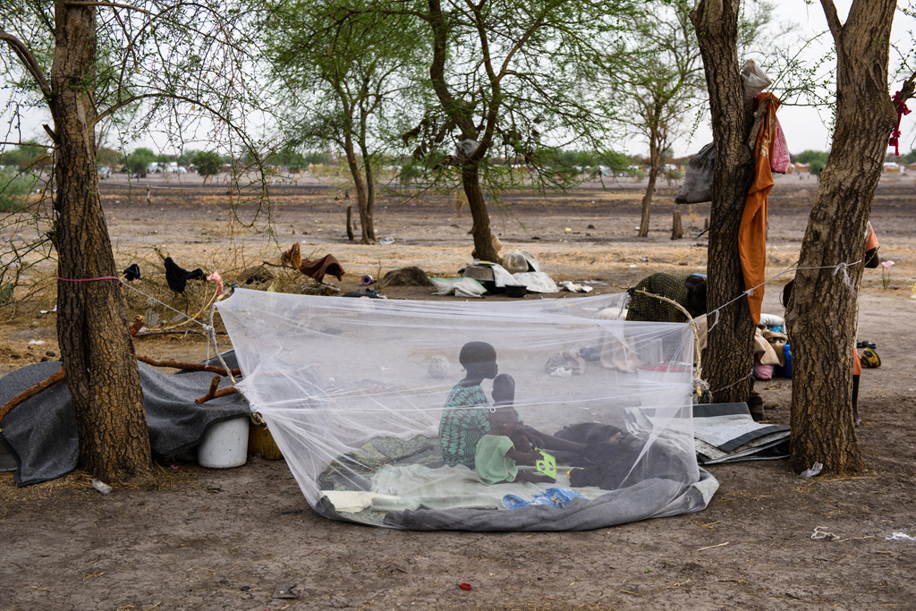 Tổ chức Di cư Quốc tế kêu gọi tài chính giúp đỡ Nam Sudan