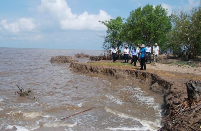 EU hỗ trợ Việt Nam nghiên cứu chống xói mòn và bảo vệ bờ biển
