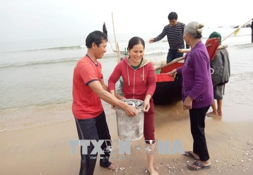 """Ngư dân Quảng Bình trúng """"lộc biển"""" đầu năm"""