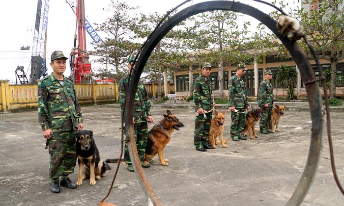 """Đội """"Khuyển Cảnh"""" tại Trung tâm Huấn luyện chó nghiệp vụ Bộ đội Biên phòng Đà Nẵng"""