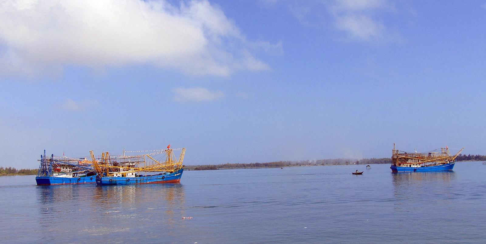 Quảng Nam: Ngư dân nô nức ra quân đánh bắt hải sản