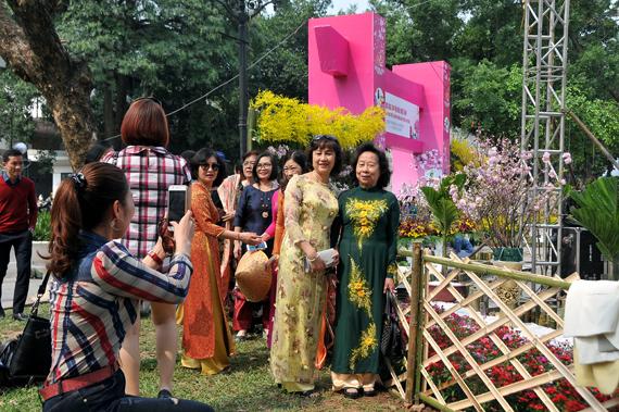 Người dân Hà Nội háo hức chụp ảnh với hoa anh đào