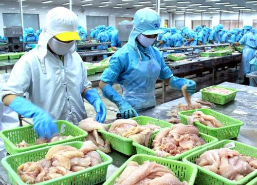 Ngành thủy hải sản Việt Nam cần bài bản hơn để đáp ứng được yêu cầu xuất khẩu sang Hoa Kỳ