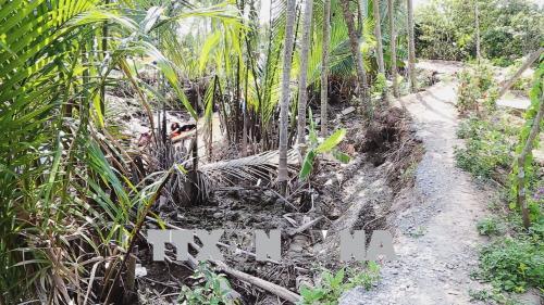 Khẩn trương khắc phục sạt lở kênh rạch trong Khu Du lịch cấp quốc gia Thới Sơn (Tiền Giang)