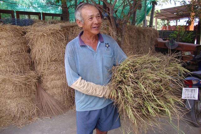 Bến Tre tích cực phòng, chống hạn, xâm nhập mặn trong mùa khô