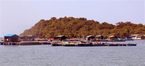 Phát triển du lịch cộng đồng ở xã đảo Tiên Hải